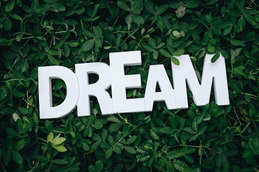 Kendra Nix Dream Big Blog